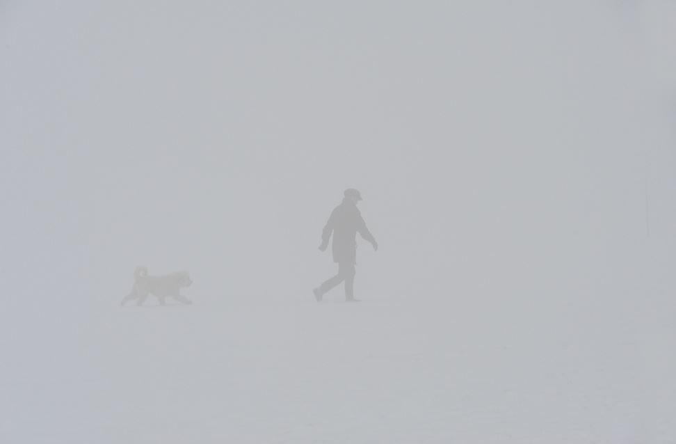 Woman & Dog, Snow & Fog