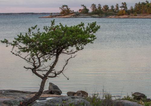 Inlet at Georgian Bay